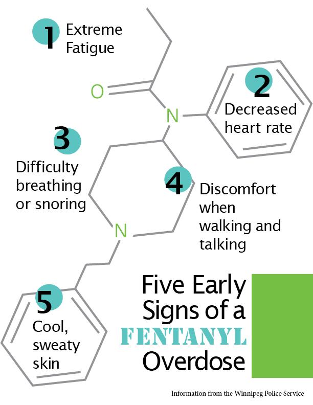 Infographic by Vanessa Ogibowski