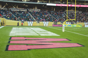 Investors Group Field is painted pink as part of a national campaign to raise awareness of women's cancers in Canada. THE PROJECTOR/Laura Hayward