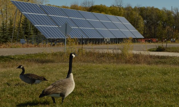 New Solar Installation Highlights Need for Clean Energy