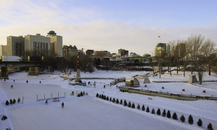 Winnipeg's Winter Attraction: The Forks in Photos