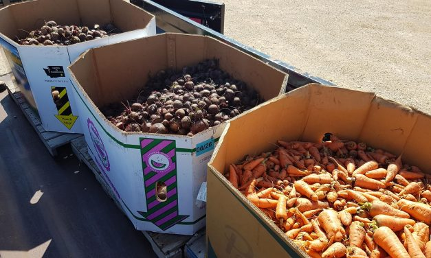 "RRC makes record Winnipeg Harvest donation with ""Grow-a-Row"""